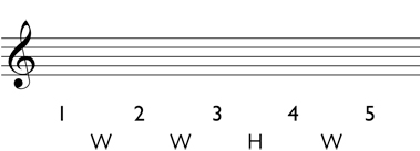 Major triad: write the whole steps and half steps