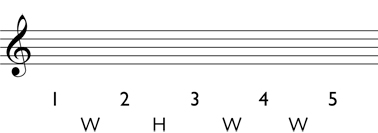 Minor triad step 2: Write the whole steps and half steps between each scale degree