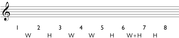 How to determine the notes of a harmonic scale Step 2: write the pattern of whole steps and half steps