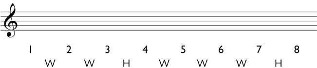 Major scale: Write the pattern of whole steps and half steps