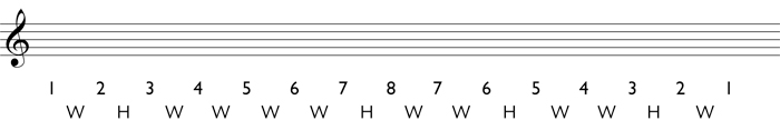 Step 2 for writing a melodic minor scale: write in the whole steps and half steps