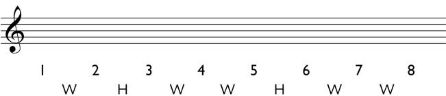 Natural minor scale step 2: write in the whole steps and half steps